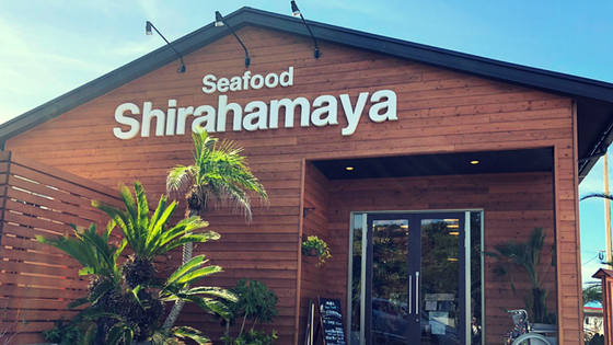 福岡ハワイ糸島観光芥屋の大門ヤシの木ブランコトトロの森白浜屋