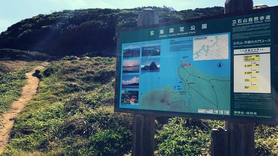 福岡ハワイ糸島観光芥屋の大門ヤシの木ブランコトトロの森